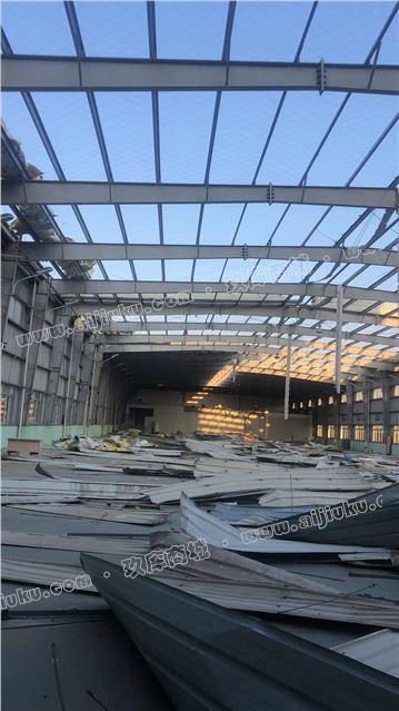 出售31米无中柱长117米高度7.8米开间6.5米钢结构厂房